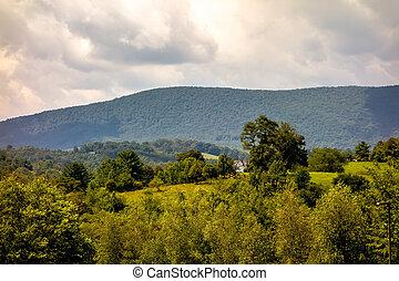 ashe, município, montanhas, carolina norte, visto, de, a, avenida cume azul, em, verão