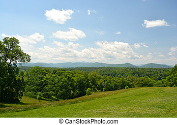 asheville, carolina norte