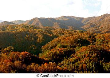 asheville, carolina norte, montanhas