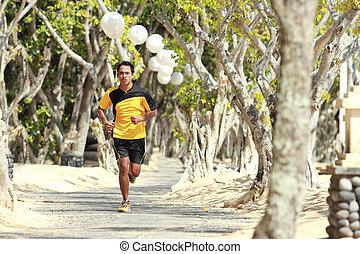 asiático, homem jovem, executando, ligado, a, ruela, com, árvores, ao lado, desporto, conceito