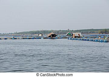 Asia, Montenegro, Thailand, Agriculture, Aquaculture