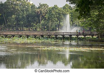 asia, myanmar, yangon, kandawgyi, see, park