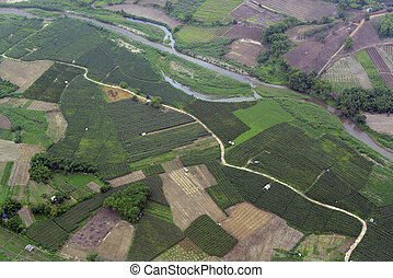 ASIA THAILAND MAE HONG SON PAI - A river with fields on the...