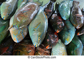 ASIA THAILAND PHUKET MARKT - Papagai fish and seafood in a ...
