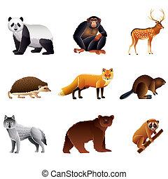 Asian animals vector set