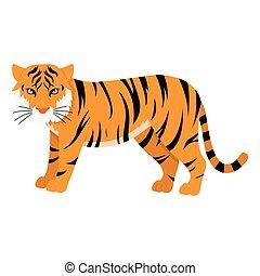 Asian bengal tiger, vector illustration