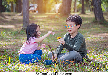 Asian brother and sister playing together on grass field