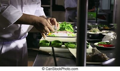 Asian cook at work in kitchen