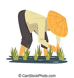 Asian Farmer in Straw Conical Hat Caring for Plants on Paddy Field Cartoon Style Vector Illustration on White Background