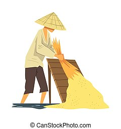 Asian Farmer in Straw Conical Hat Harvesting Rice Cartoon Style Vector Illustration on White Background