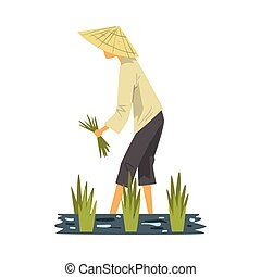 Asian Farmer in Straw Conical Hat Harvesting Rice in Paddy Field, Male Peasants Character Working on Field Cartoon Style Vector Illustration