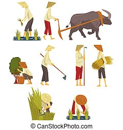 Asian Farmers in Straw Conical Hats Working on Field, Peasants Characters Planting and Harvesting Rice, Picking up Tea Leaves Cartoon Style Vector Illustration