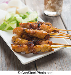 Asian gourmet chicken sate