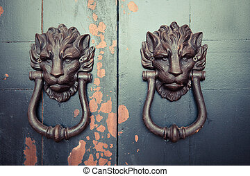 Asian Lion Door