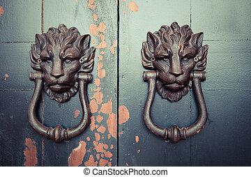 Asian Lion Door
