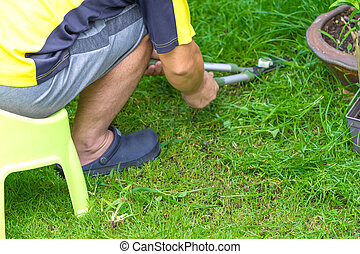 Asian man sat on plastic chair and cut the grass in his garden in the front of home.