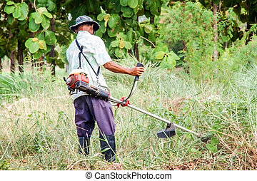 asian old man Mowing the Grass