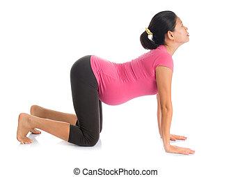 Asian pregnant yoga position cat pose. - Prenatal yoga...