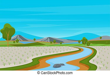 Asian Rice Field Paddy Plantation Agriculture Landscape Illustration