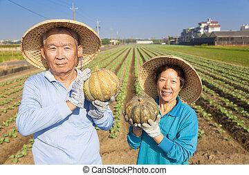 asian senior couple farmer holding pumpkin on his farm