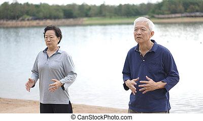 Asian Senior Elderly couple Practice Taichi, Qi Gong...