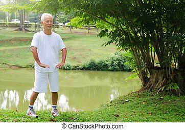 asian senior man performing tai chi