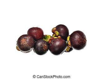 asian tropical mangosteen fruit