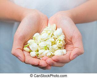 Asian woman hands holding white jasmine flowers