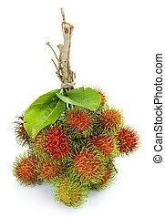 asiatico, frutta, rambutan, bianco, fondo