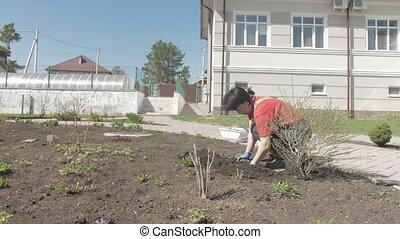 asiatique, ensoleillé, travaux, jardin, jour, femme