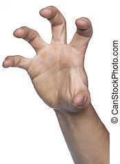 asir, gesto, mano, appropriation, hecho