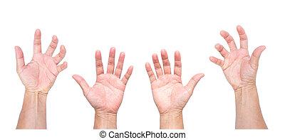 asir, hombre, manos, aislado, abierto, fondo blanco, manos