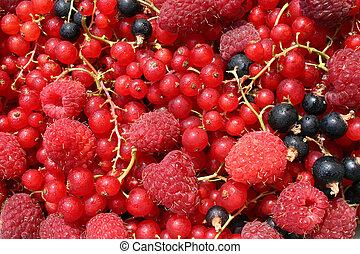 asorted, vruchten