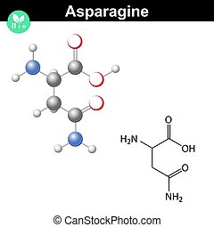 Asparagine proteinogenic amino acid - chemical formula and...