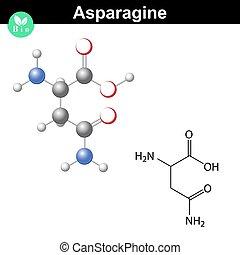 Asparagine proteinogenic amino acid - chemical formula and...