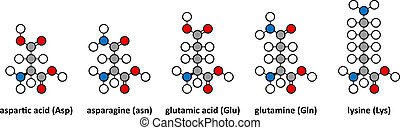 Aspartic acid, asparagine, glutamic acid, glutamine and...