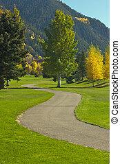 aspen, campo golfe, com, pinhos