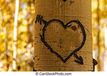 Aspen Tree Hearts