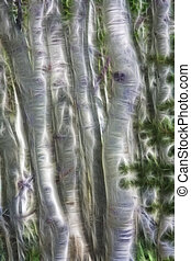 Aspens Abstraction