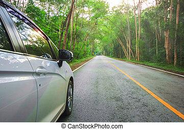 asphalt, auto, parken, front, weißes, straße