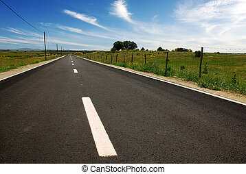 Asphalt in Countriside