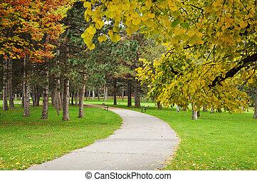 Asphalt path in autumn park