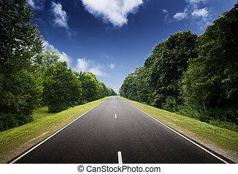 Asphalt road in green forest.