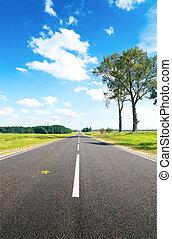 Asphalt road in green meadow