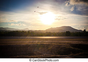 Asphalt road In mountains. Panorama at sunset light with lens flare effects. Birds in the sky. Koh Samui airport