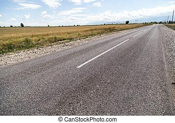 asphalt road in nature