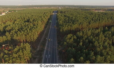 asphalt Road in pine forest with a cars. Aerial video