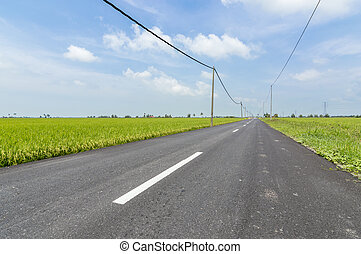 Asphalt road in rural and paddy farm with blue skies in Selangor, Malaysia
