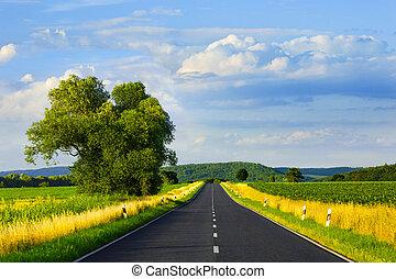 Asphalt road in summer day
