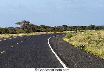 Asphalt road in the African savannah